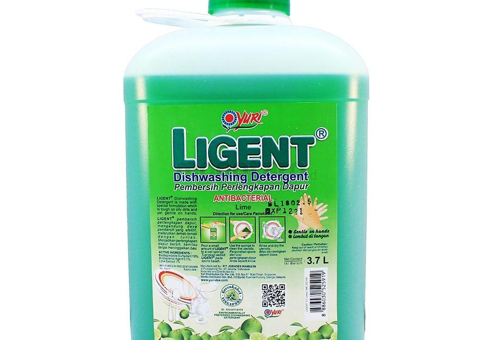 9. Yuri Ligent Diswashing