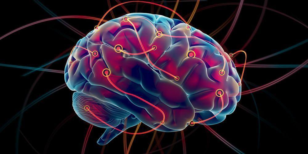 Menjaga Sistem Saraf dan Fungsi Otak
