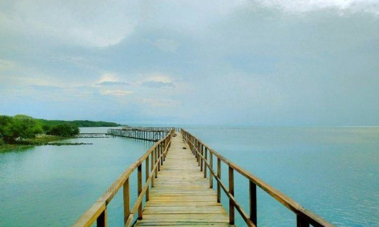 11.   Pantai Brondong