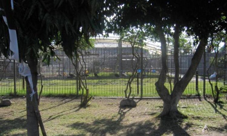 18.   Kebun Binatang Gudang Garam
