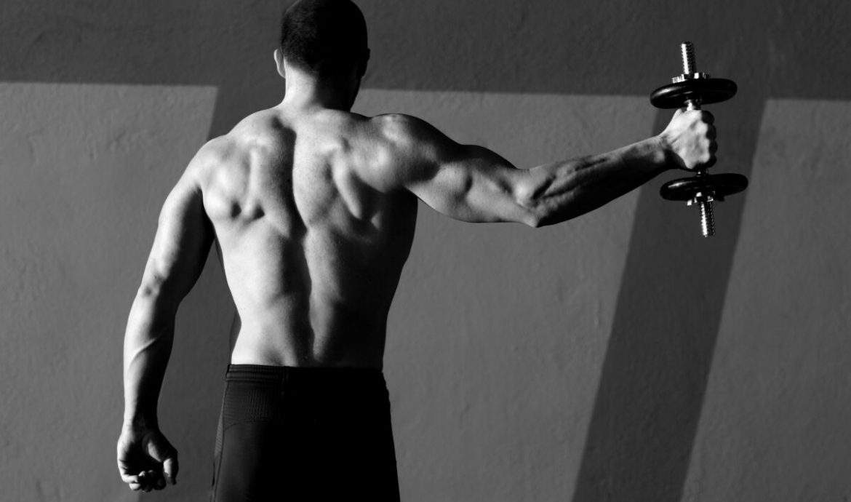 Meningkatkan Kinerja Otot