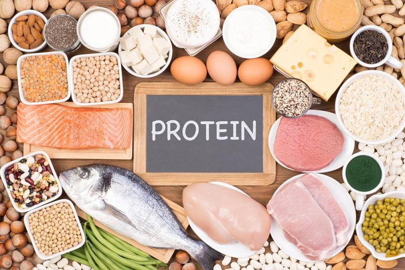 Kaya Akan Protein