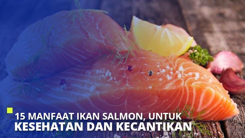15 Manfaat Ikan Salmon, Untuk Kesehatan dan Kecantikan