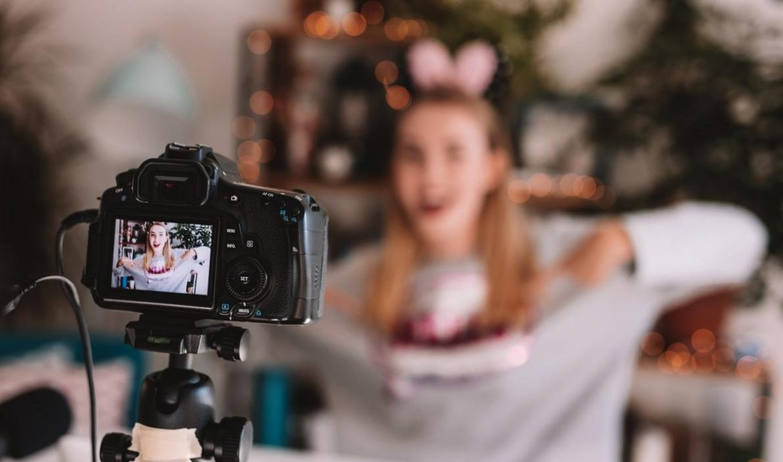 2. Vlogger