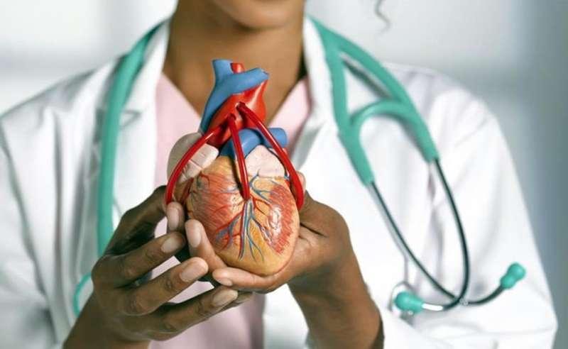 2.   Menghindari Penyakit Jantung