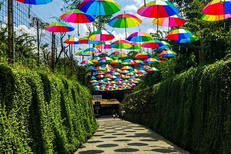 20.   Taman Botani Sukorambi