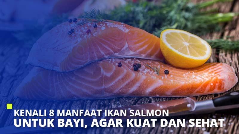 Kenali 8 Manfaat Ikan Salmon Untuk Bayi Agar Kuat dan Sehat