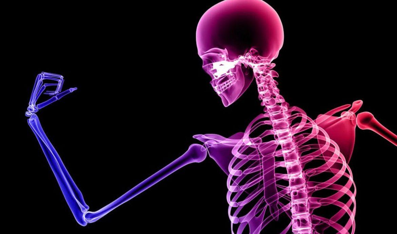 6.   Menguatkan Tulang