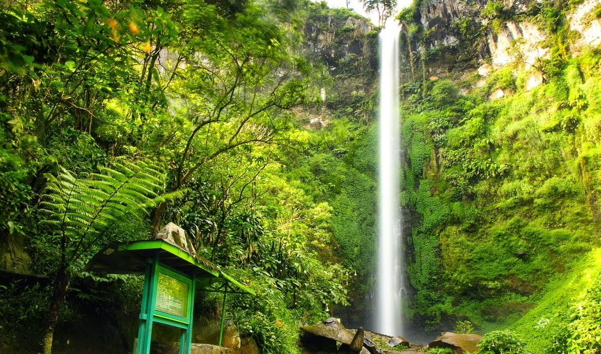 9. Air Terjun Coban Rondo