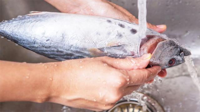 2.   Mengolah Ikan Terlebih Dahulu