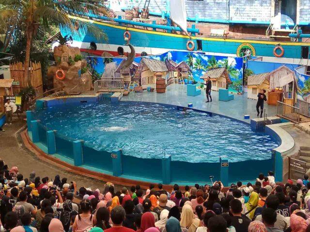 7. Terdapat Safari Water World