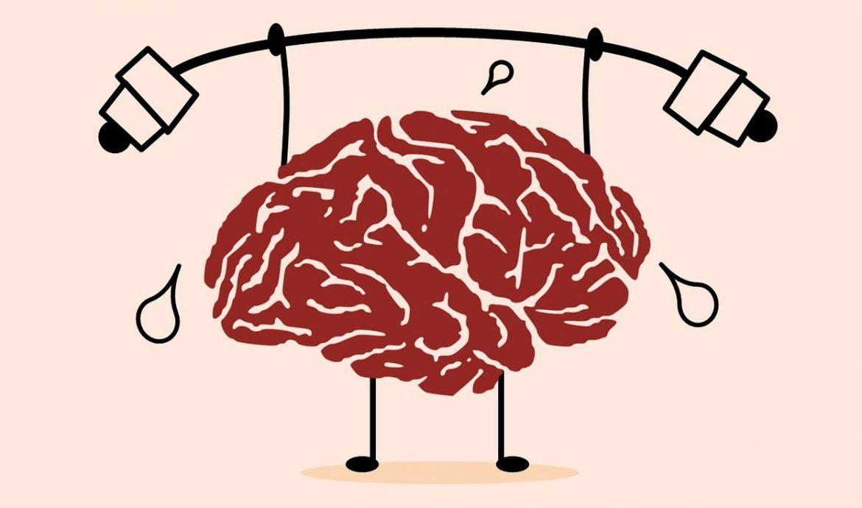 8.   Mengoptimalkan Fungsi Otak