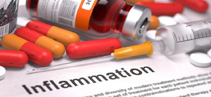 4. Bersifat Antiinflamasi