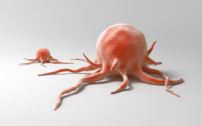 6. Menurunkan Risiko Kanker