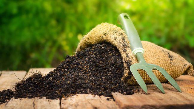 6. Membuat Kompos dan Mulsa Sendiri
