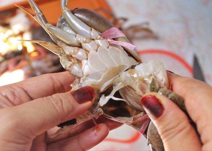 2. Bersihkan Kepiting