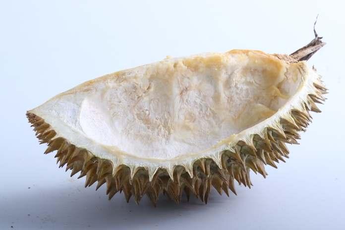 2. Kulit Durian